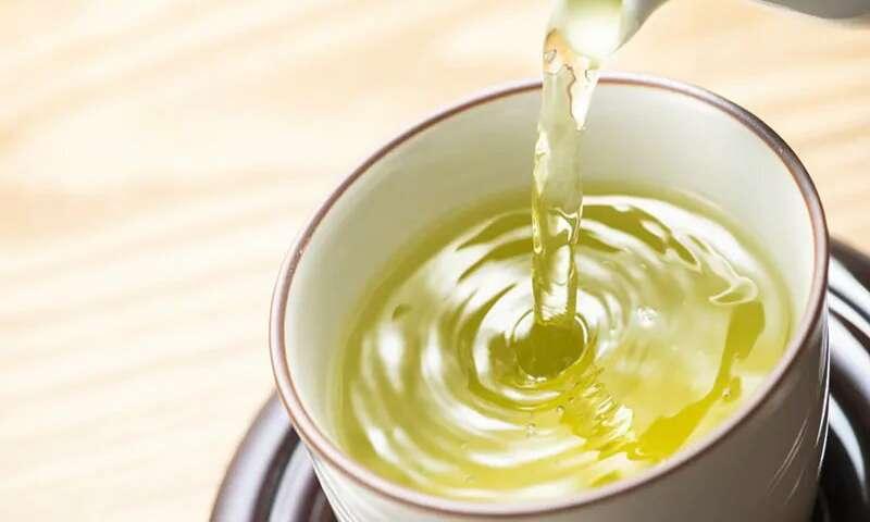 sachets de thé vert